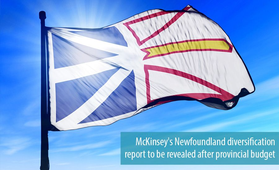 McKinsey's Newfoundland diversification report to be revealed after provincial budget
