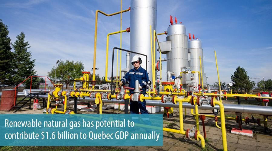 Renewable natural gas has potential to contribute $1.6 billion to Quebec GDP annually
