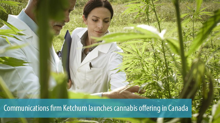 Communications firm Ketchum launches cannabis offering in Canada