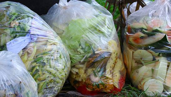 Second Harvest and agri-food consultancy VCMI to research food loss and waste
