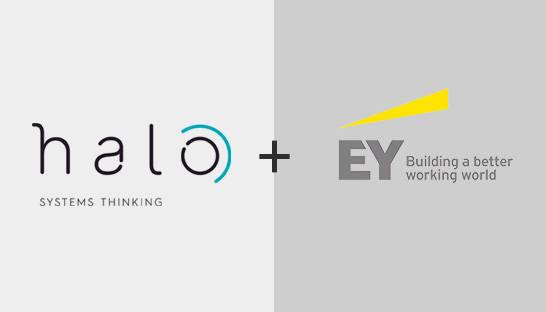 EY acquires public sector specialist Halo Management Consulting
